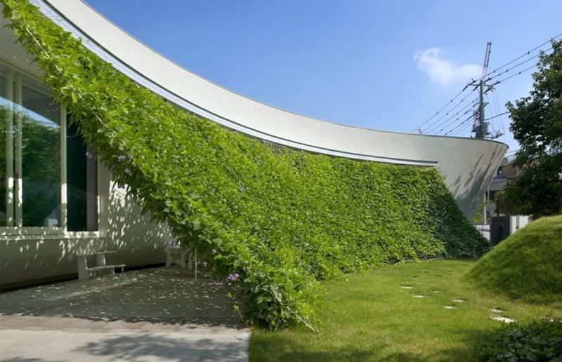 small garden design_designrulz (9)