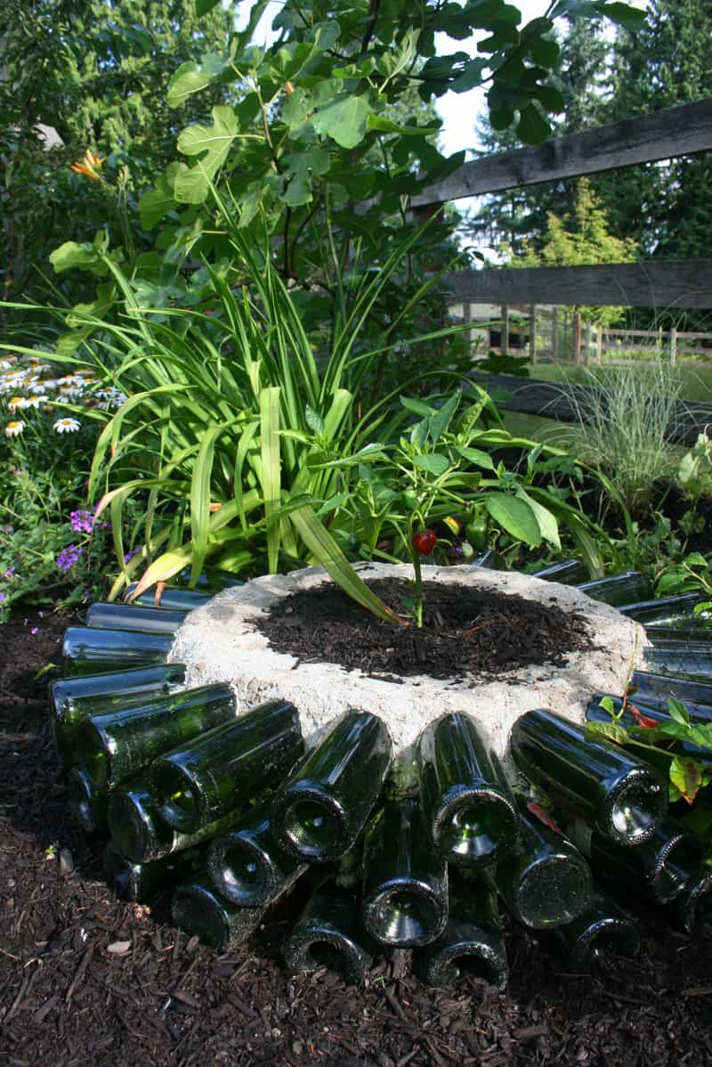 wine bottle garden-designrulz (5)