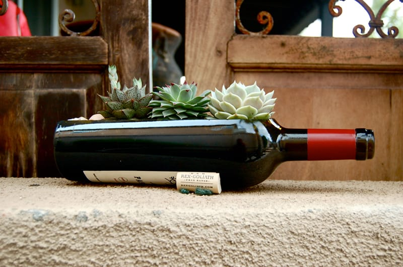wine bottle garden-designrulz (7)