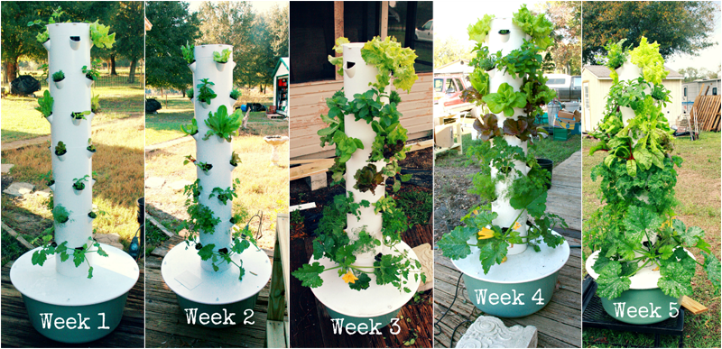 Vertical Aeroponic Tower Garden