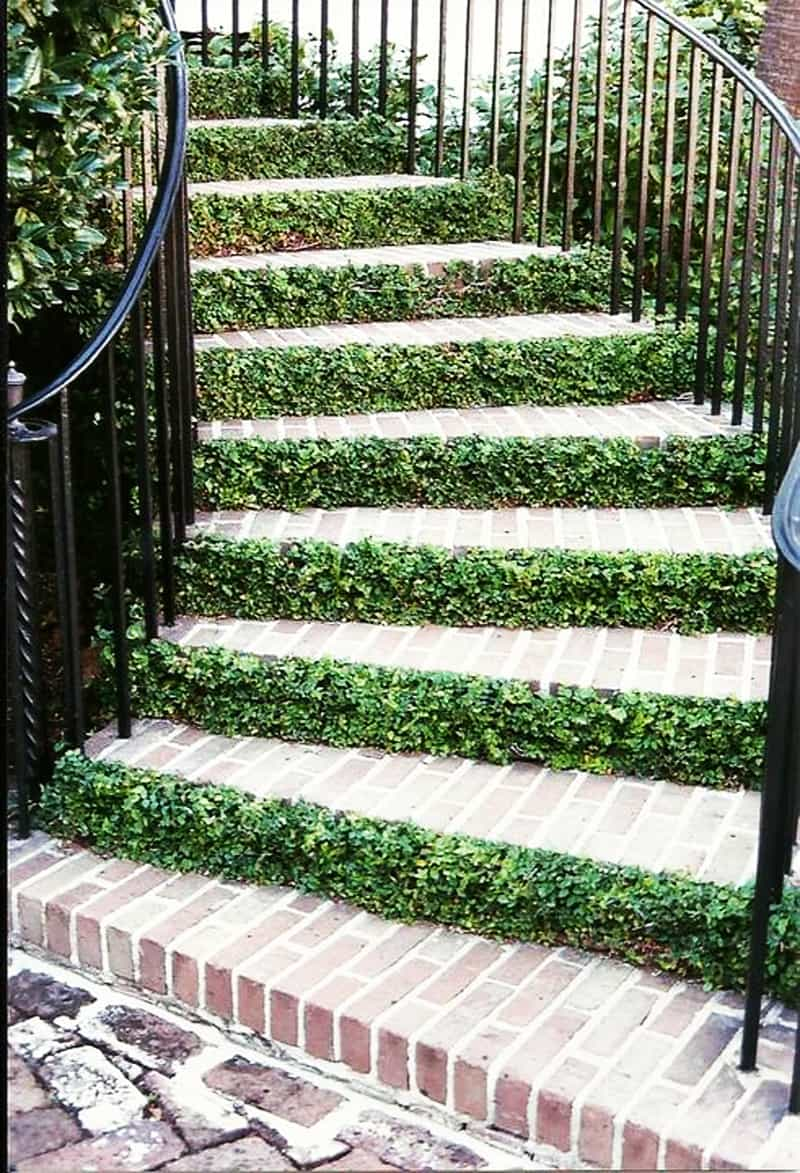 Steps To Apply Makeup For Beginners: 40 Ideas Of How To Design Exterior Stairways