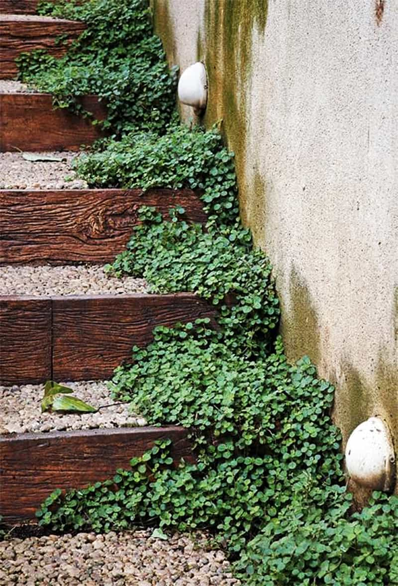 OUTDOOR STEPS-DESIGNRULZ (27)