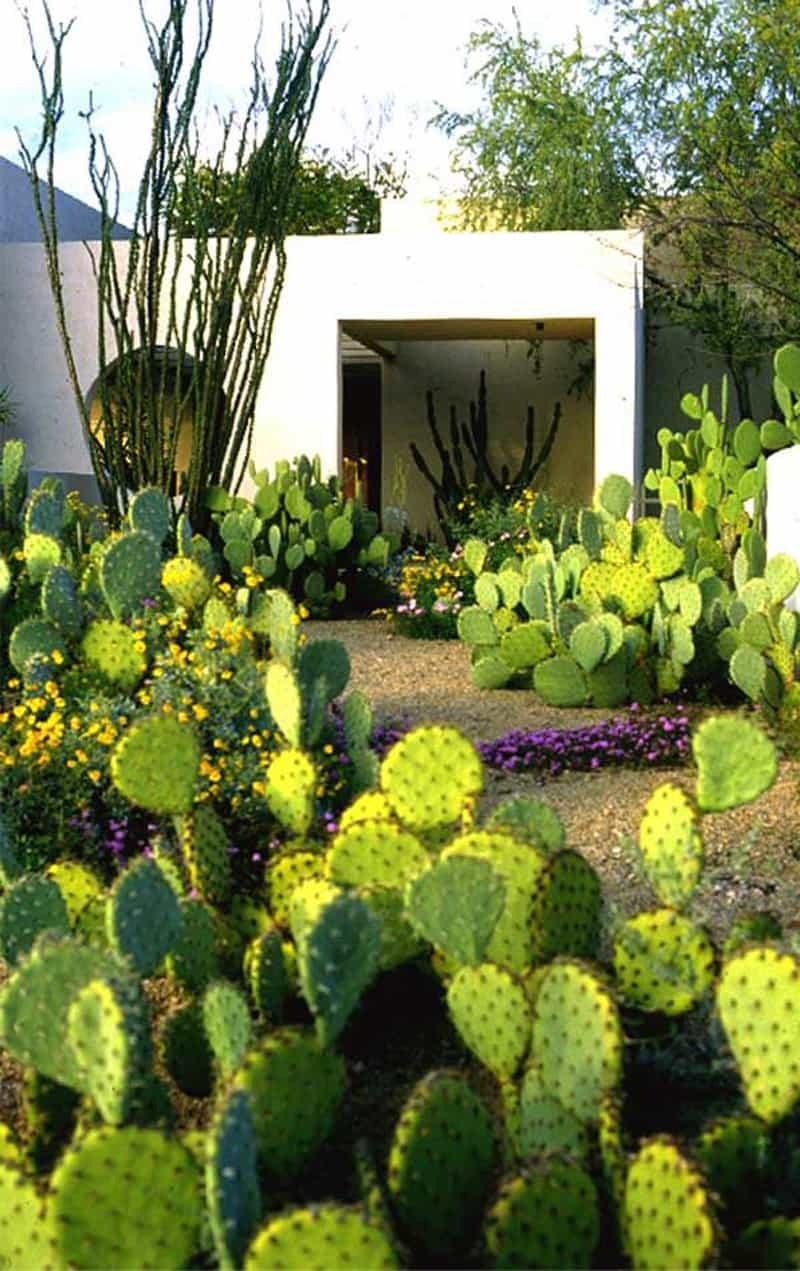 garden designrulz (16)