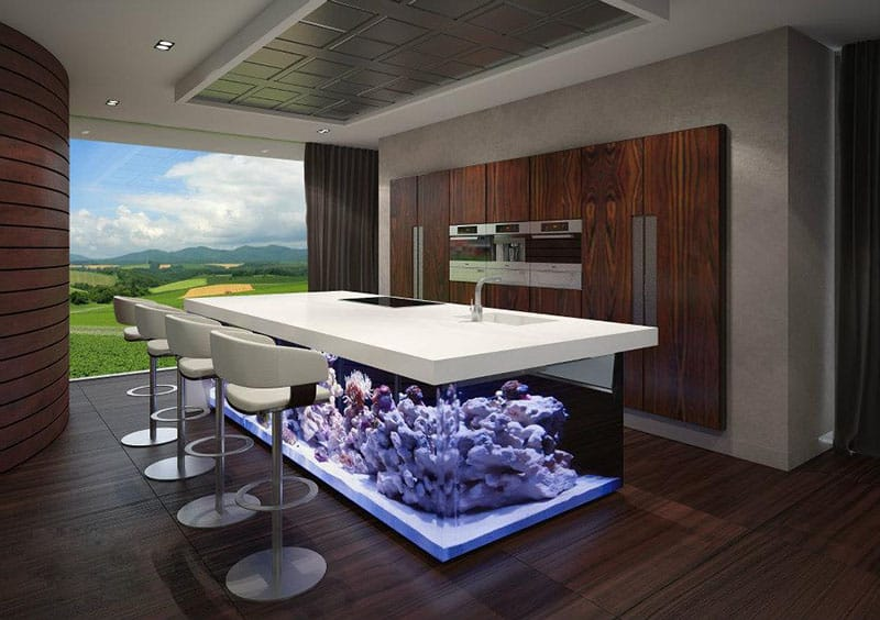 The Ocean Kitchen A Giant Aquarium Kitchen Island By