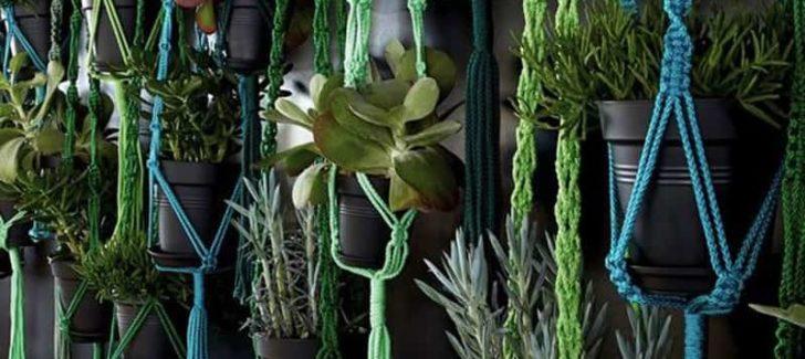 green plant macrame plant hanger