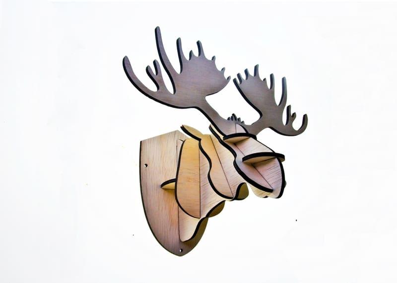 4 Moose trophy-dr (2)