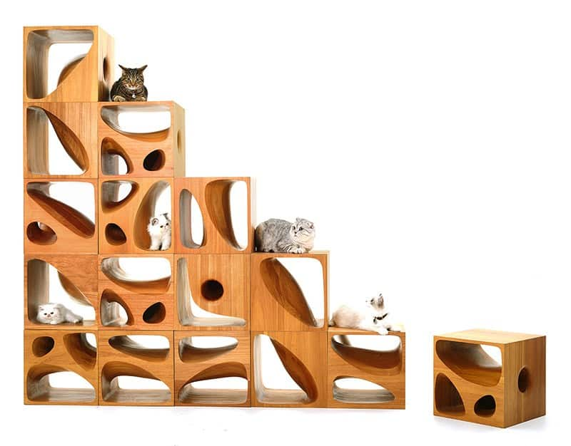 Catable 2 0 Sculptural Wood Cubes Designed For Playful Cats