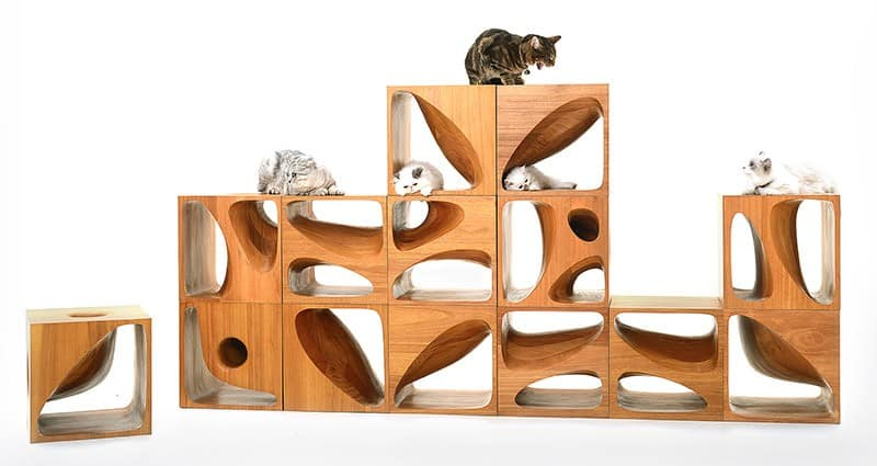 Catable 2 0 sculptural wood cubes designed for playful cats Wooden cube furniture
