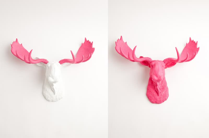 pink interior-designrulz (2)