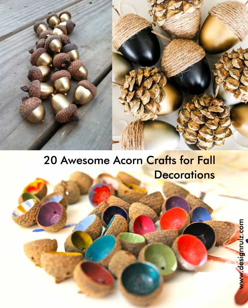 cover-designrulz-20 Awesome Acorn Crafts for Fall decoration