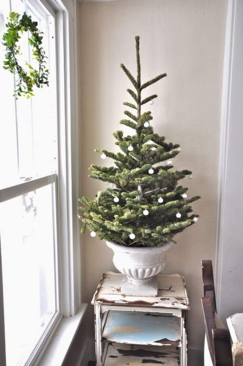 natural christmas tree-designrulz (13)