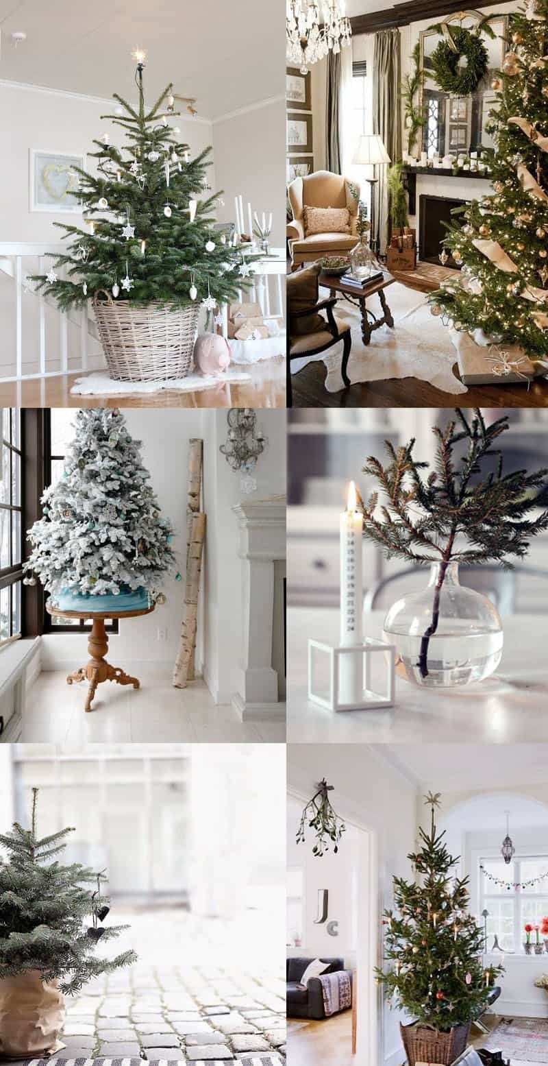 natural christmas tree-designrulz (14)