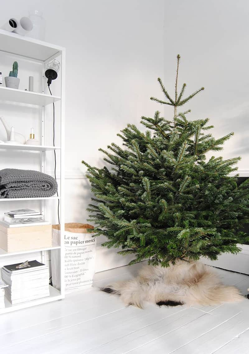natural christmas tree-designrulz (6)