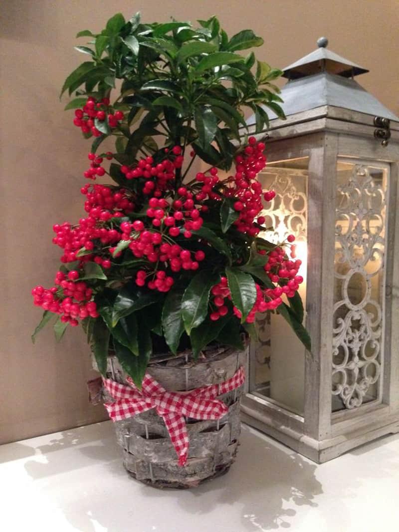 Christmas Decorating Ideas-desgnrulz (7)