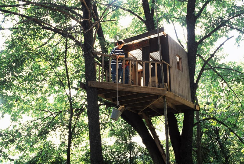 treehouse in the backyard designrulz 1 - Treehouse