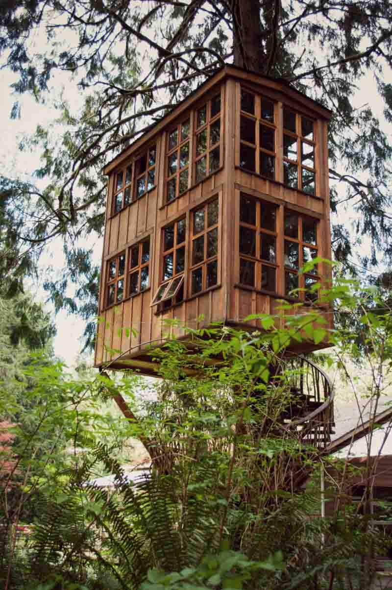 How to build a treehouse in the backyard for Architectural plans for homes