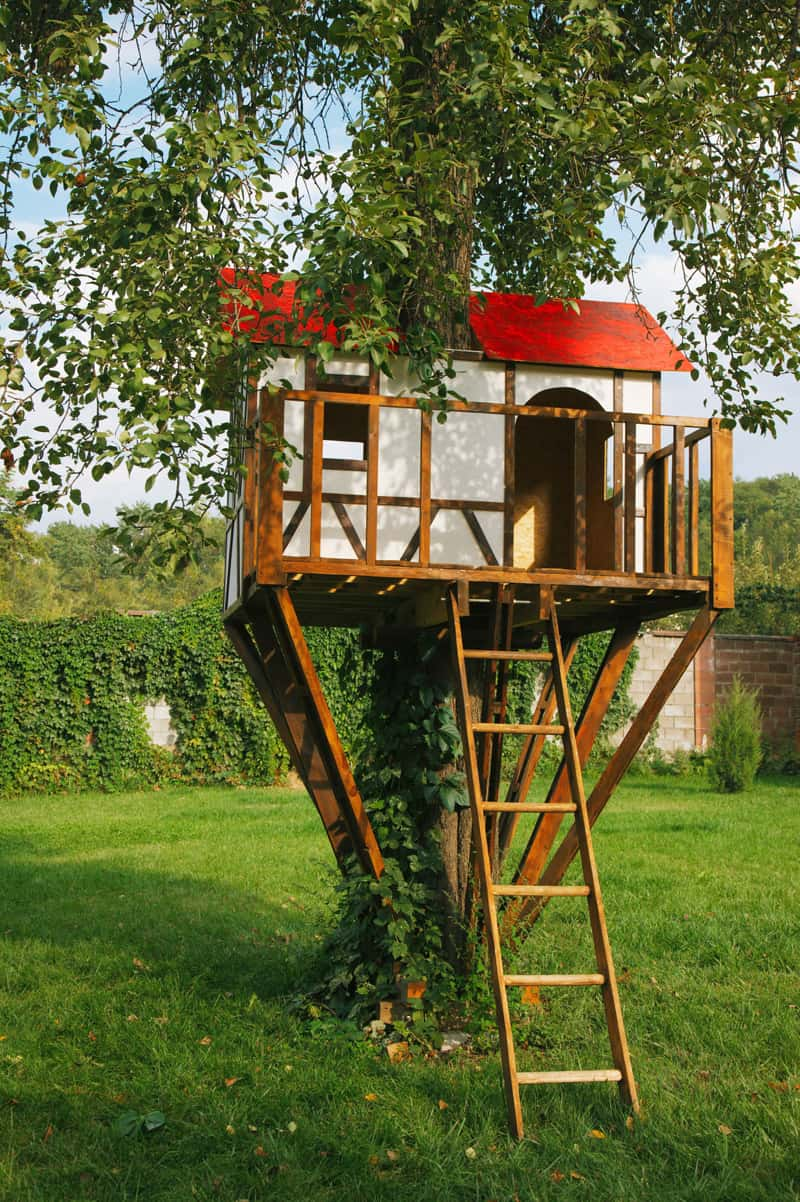 Genial Treehouse In The Backyard DESIGNRULZ (9)