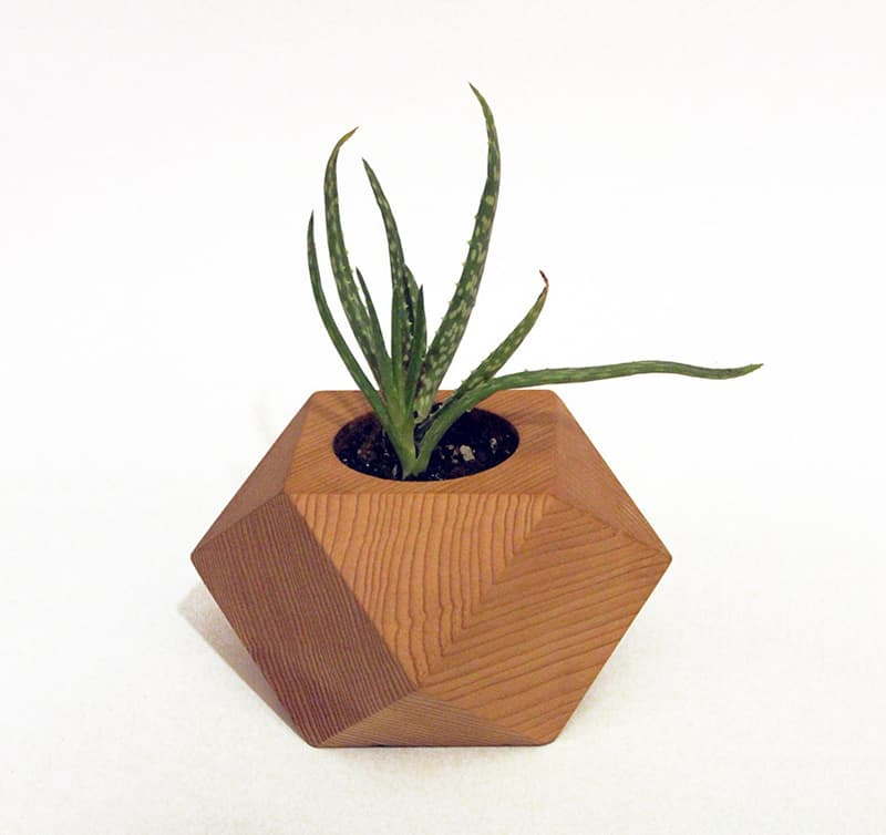 Refresh your space with a modern wooden flower pot for Geometric air plant holder