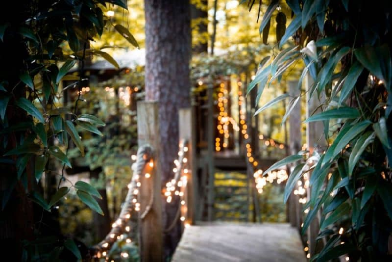 Secluded-Intown-Treehouse-designrulz (16)