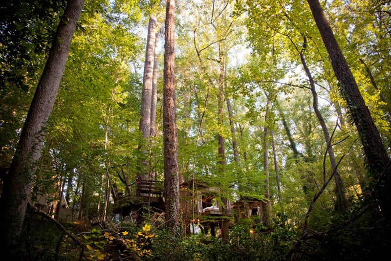 Secluded-Intown-Treehouse-designrulz (8)