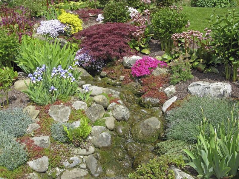rock garden-designrulz (1)