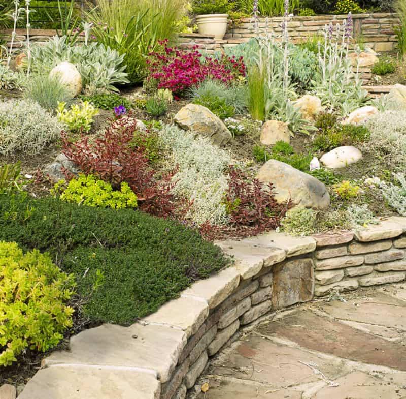 rock garden-designrulz (2)