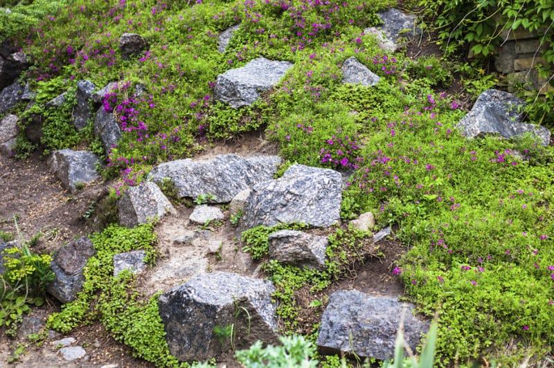 rock garden-designrulz (24)