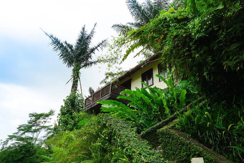 Nandini Bali Jungle Resort-designrulz (3)