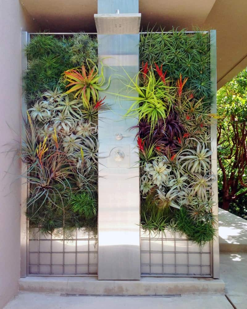 tropical bathroom designrulz (2)