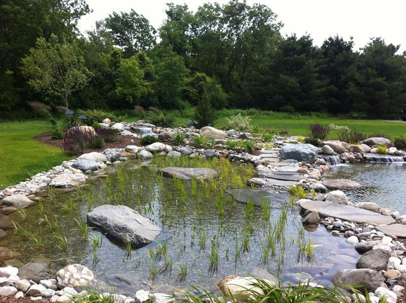 tropical pools design designrulz (1)
