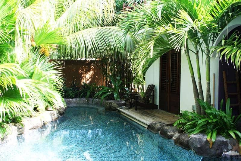 tropical pools design designrulz (15)