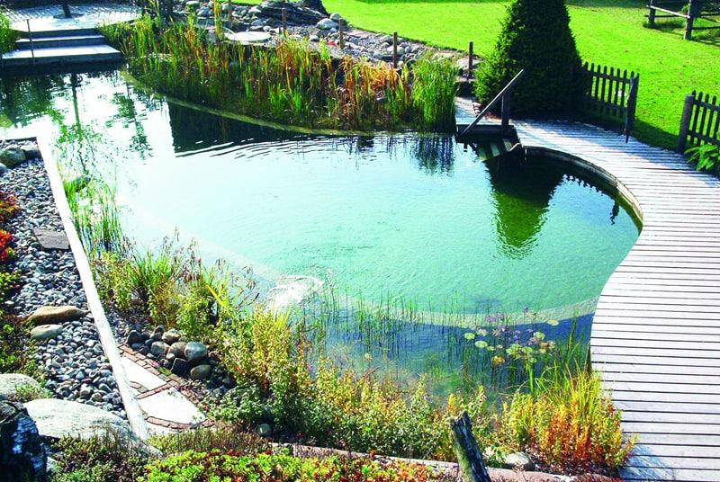 tropical pools design designrulz (18)