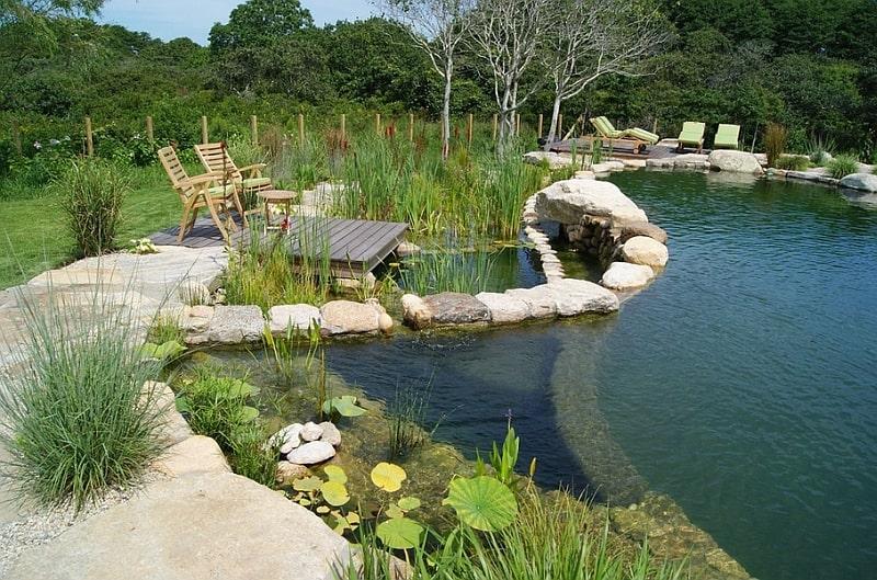 tropical pools design designrulz (2)
