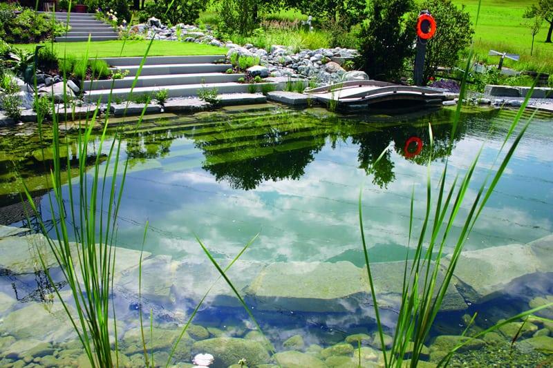 tropical pools design designrulz (24)