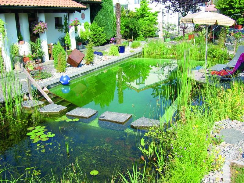 tropical pools design designrulz (25)