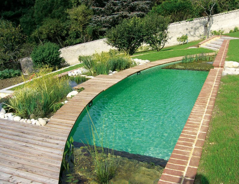 tropical pools design designrulz (31)