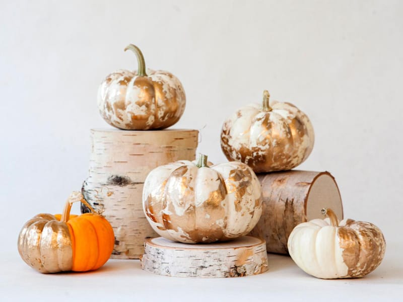 outdoor-fall-decorating-ideas-designrulz-3 & 30 Charming White Pumpkin Fall Decorations for A Festive Dinner