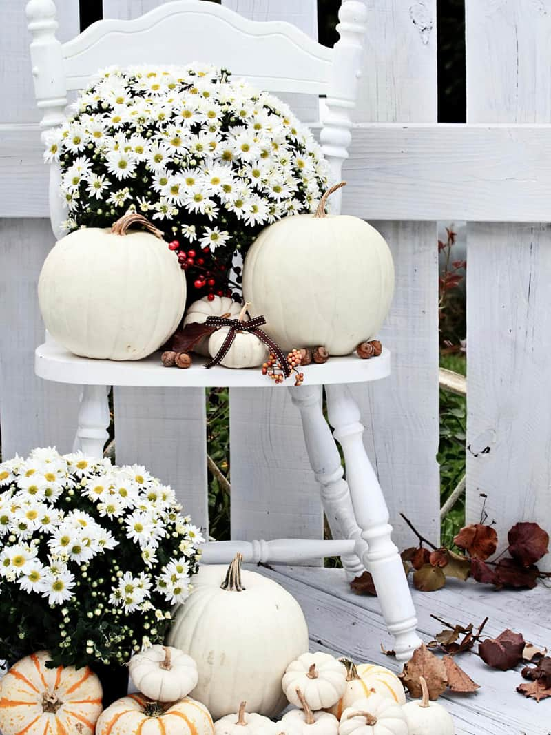 30 charming white pumpkin fall decorations for a festive dinner - Pumpkin decorating ideas autumnal decor ...