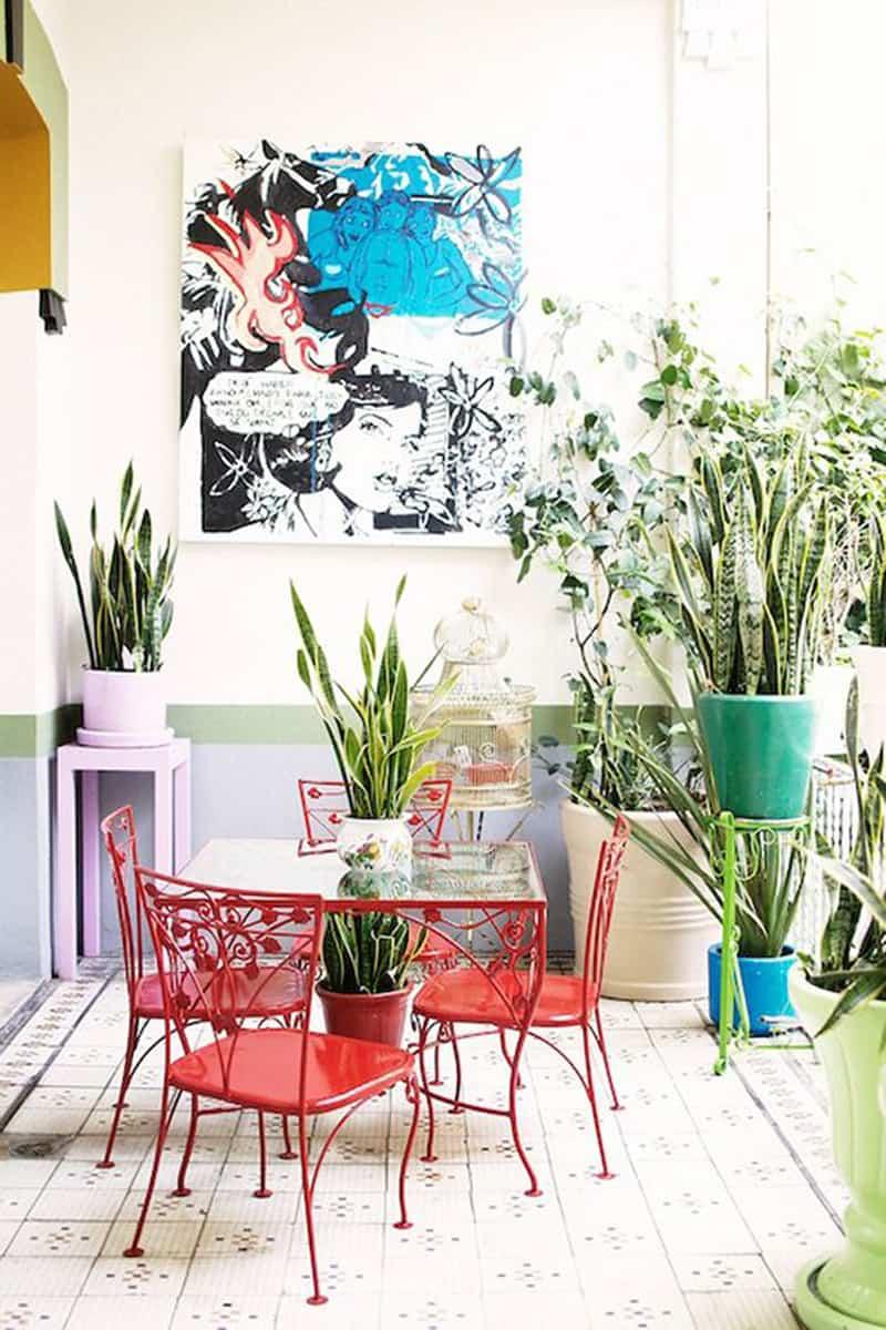 indoor palnts ideas designrulz (3)