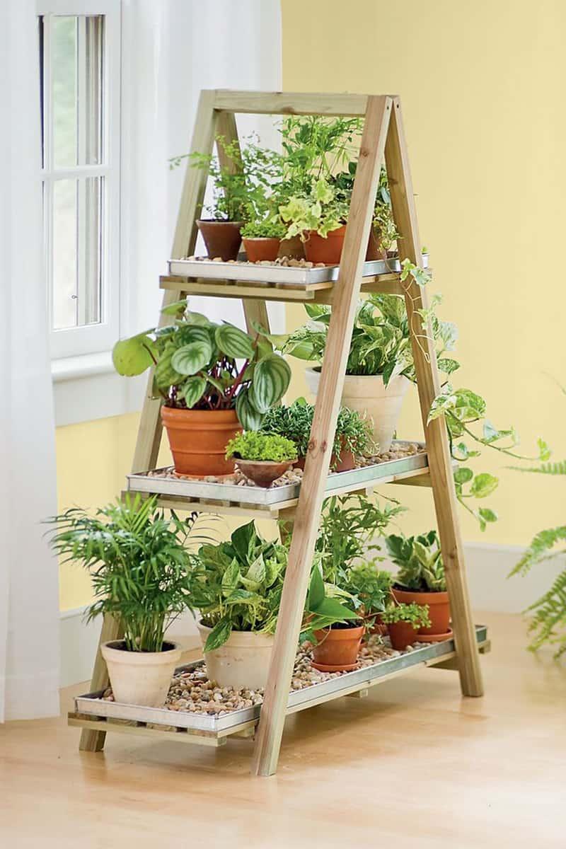 indoor plants- designrulz (15)