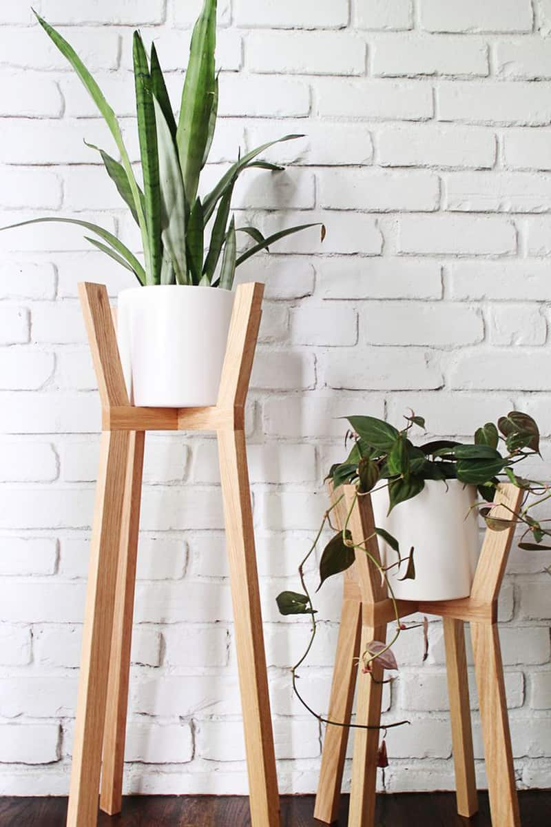 indoor plants- designrulz (16)