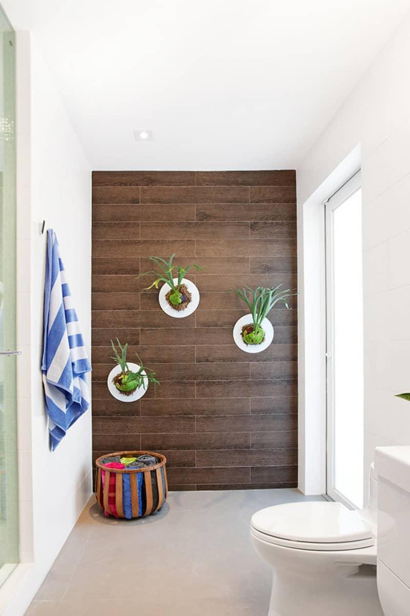 indoor plants- designrulz (19)