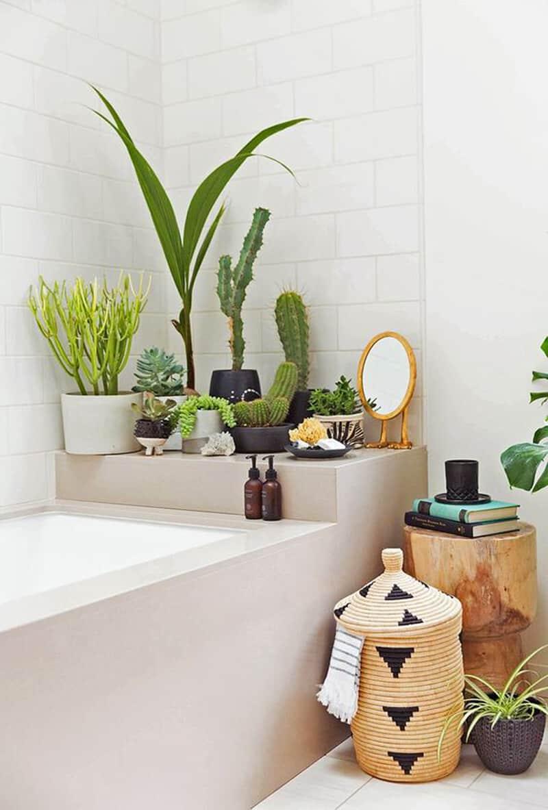 indoor plants- designrulz (20)