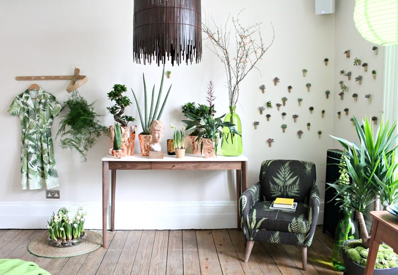 Ideas of how to display indoor plants harmoniously for Interior designs with plants