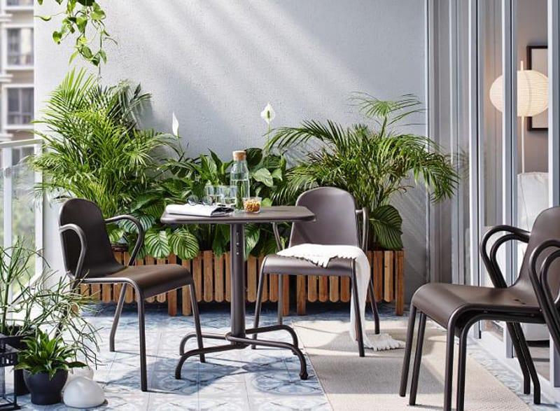 indoor plants- designrulz (22)