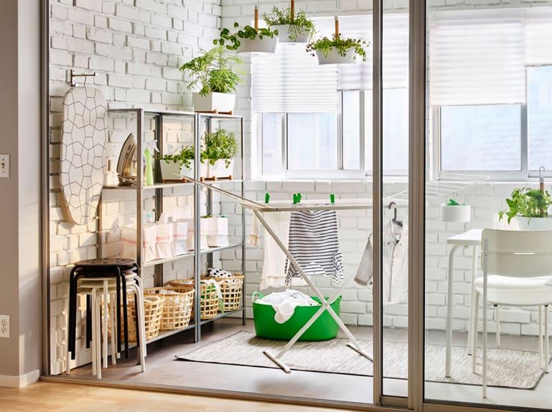 indoor plants- designrulz (23)