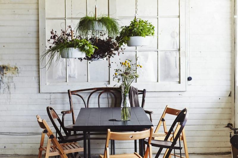 indoor plants- designrulz (25)