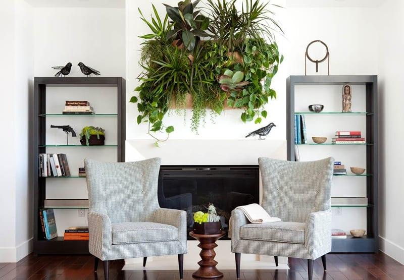 indoor plants- designrulz (26)