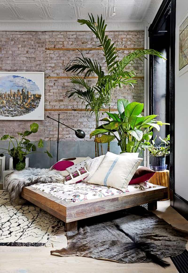 indoor plants- designrulz (3)