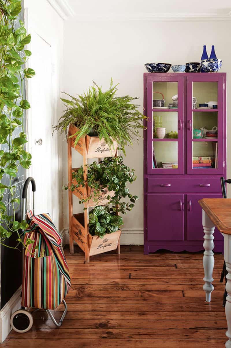indoor plants- designrulz (4)
